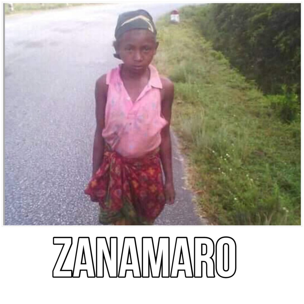 Zanamaro